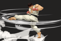 Ryu SSBU Skill Preview Side Special.png