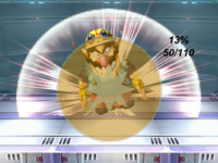 WarioSSBBNS(explosion).png