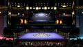 SSBU-Boxing Ring 1.png