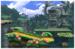 JungleHijinxsIconSSB4-U.png