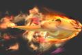 CharizardSide1-SSB4.png