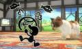 SSB4-3DS challenge image P2R3C5.png