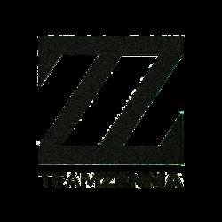 Team ZENMA