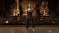 Heihachi background.jpg