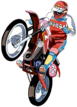 SSBU spirit Excitebike.png
