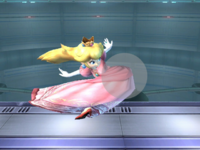 PeachSSBBSS(detector).png