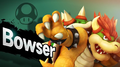 Bowser Direct.png