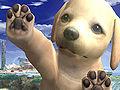 NintendogBetaScreen.jpg