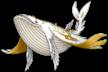SSBU spirit Cetacea.png