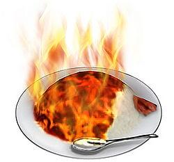 Spice curry.jpg
